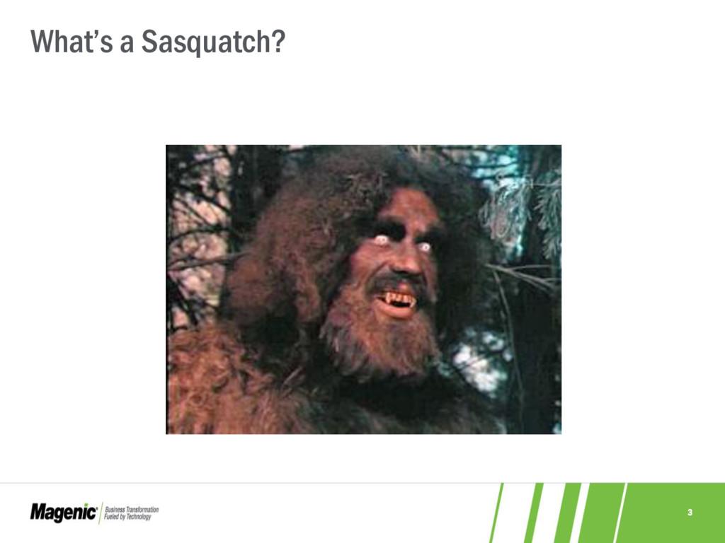 3 What's a Sasquatch?