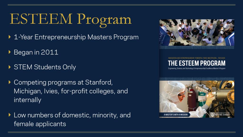 ESTEEM Program ▸ 1-Year Entrepreneurship Master...
