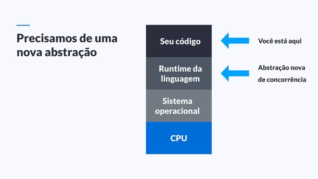 Seu código Runtime da linguagem Sistema operaci...