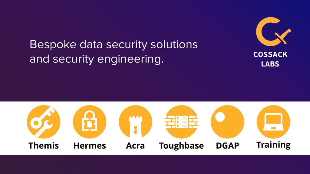 Bespoke data security solutions and security en...