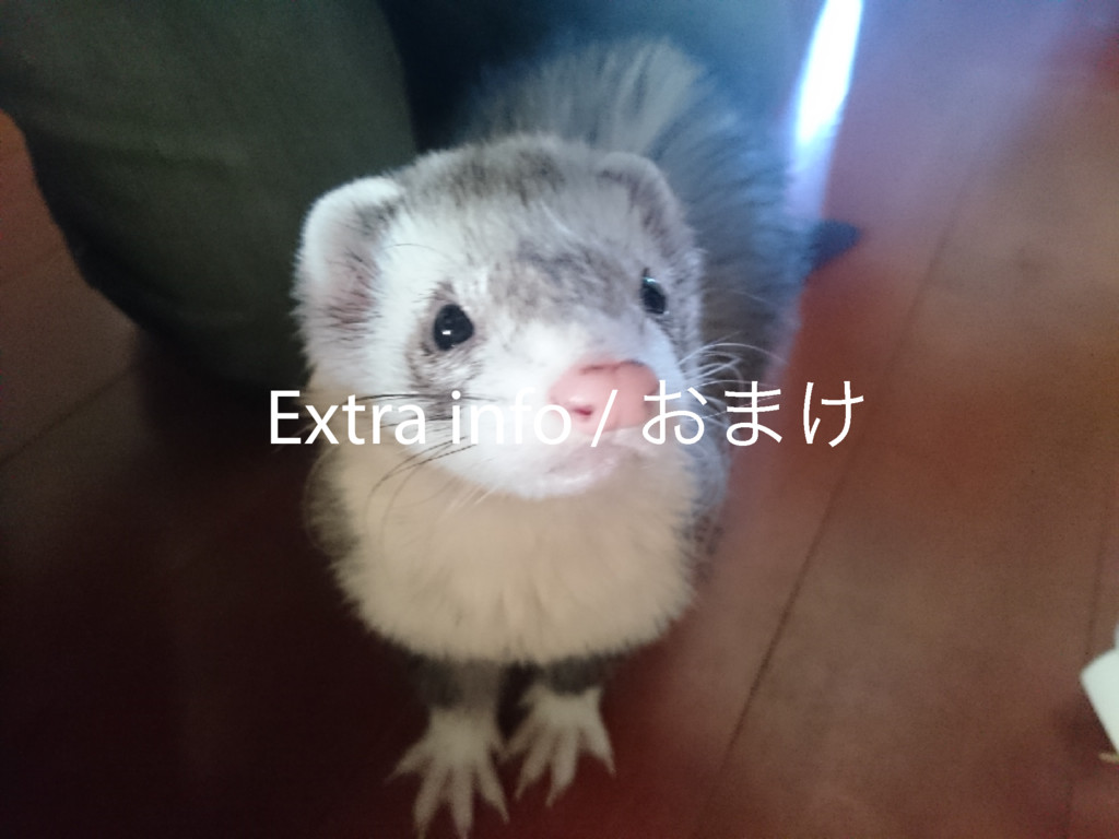 Extra info / ͓·͚