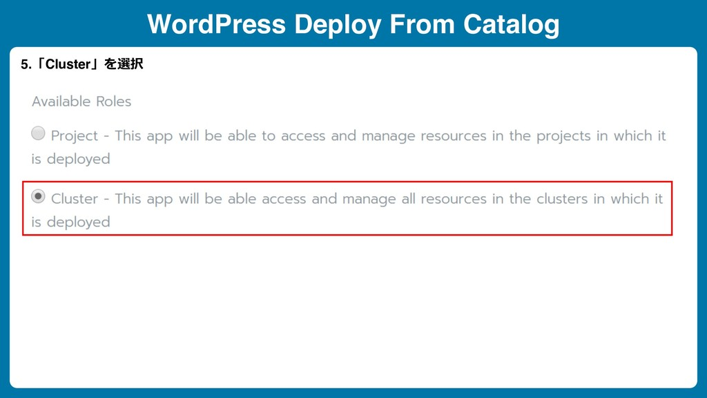 WordPress Deploy From Catalog 5.「Cluster」を選択