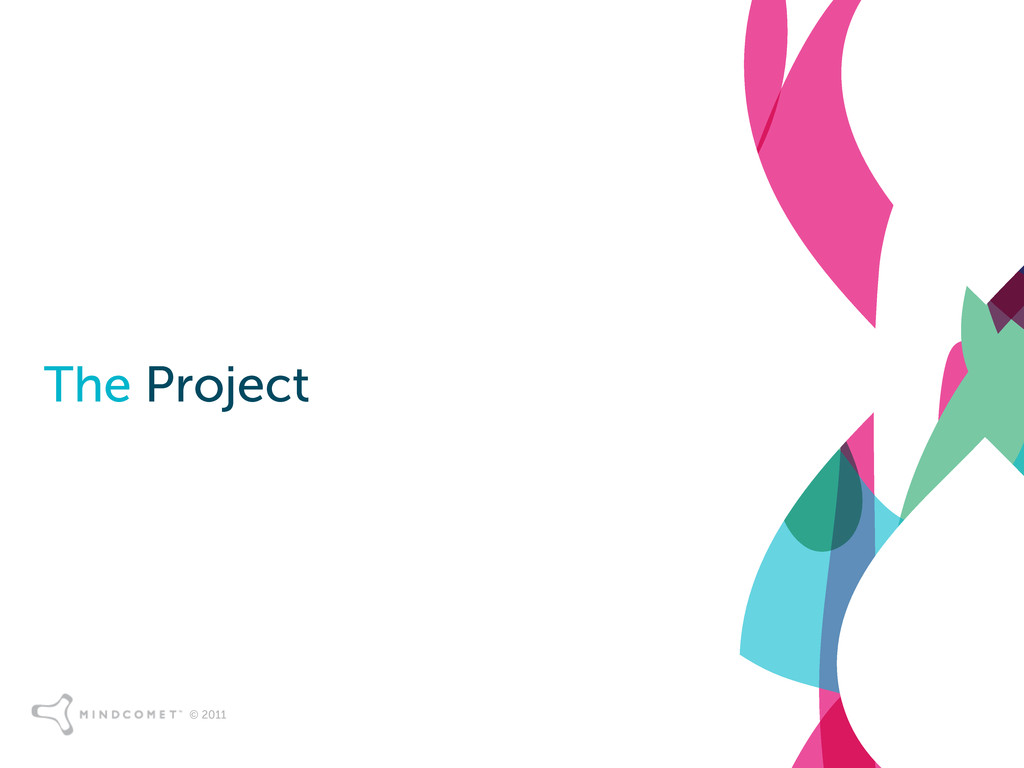 © 2011 The Project