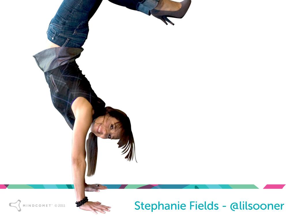© 2011 © 2011 Stephanie Fields - @lilsooner