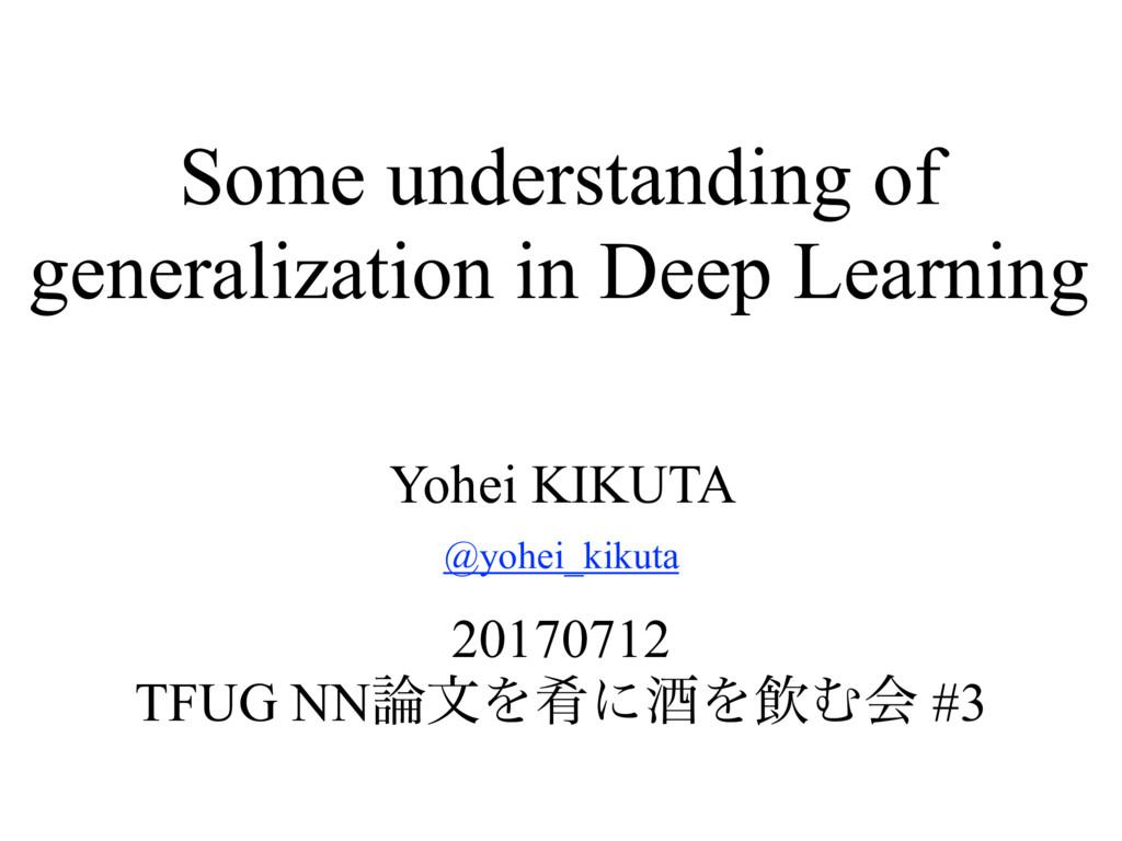 Some understanding of generalization in Deep Le...