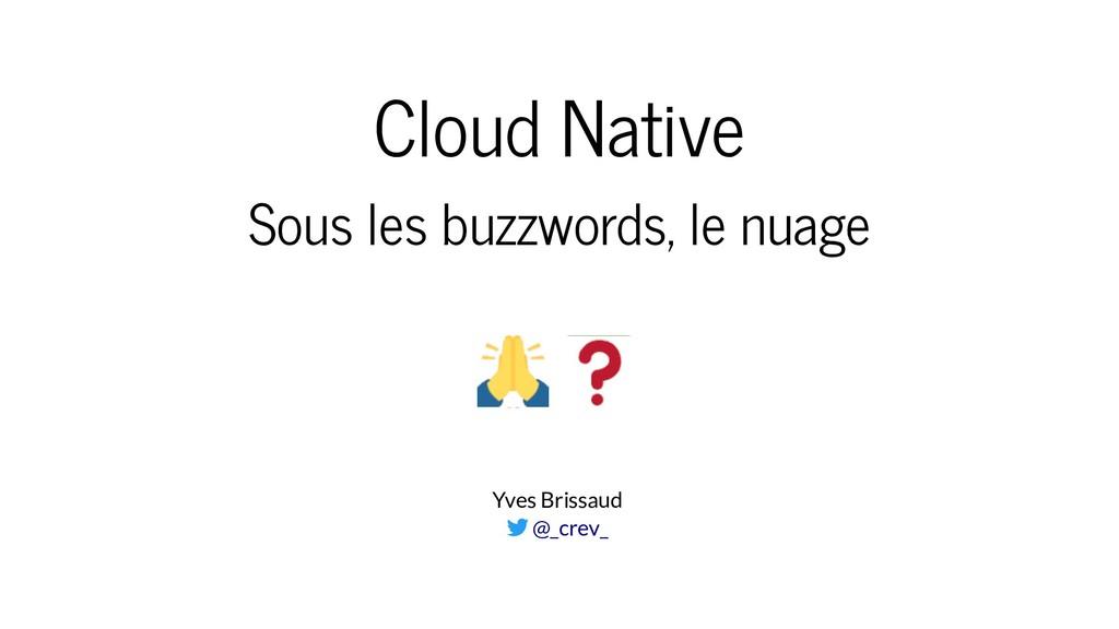 Cloud Native Sous les buzzwords, le nuage Yves ...