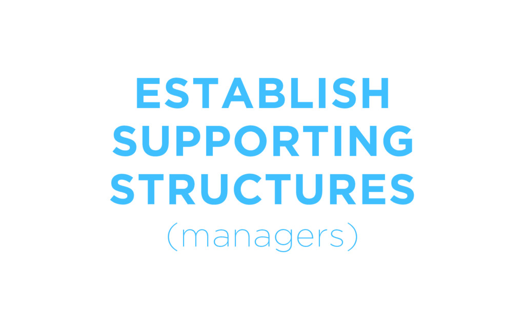 ESTABLISH SUPPORTING STRUCTURES (managers)