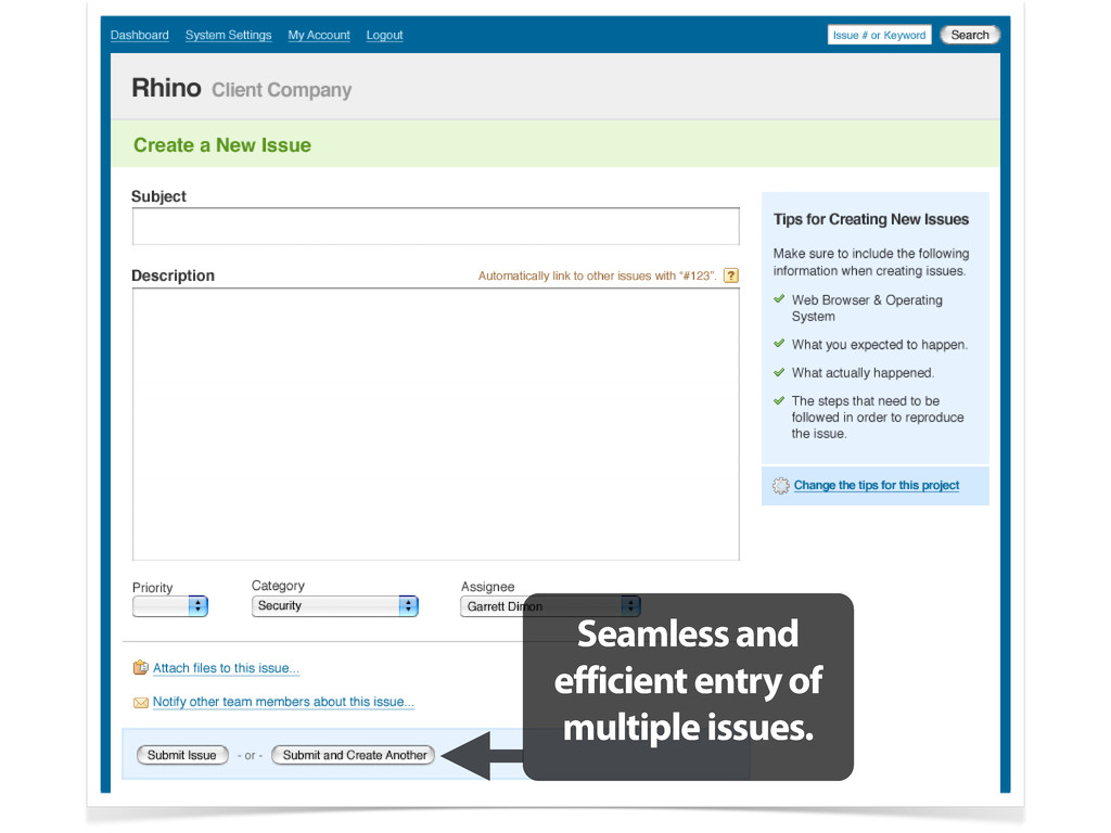 Seamless and efficient entry of multiple issues.