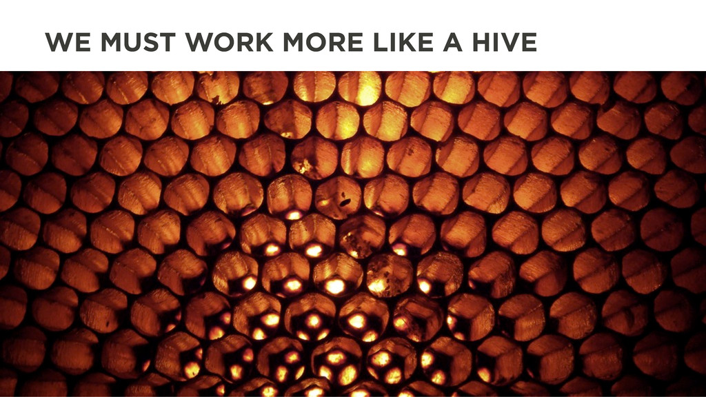 WE MUST WORK MORE LIKE A HIVE