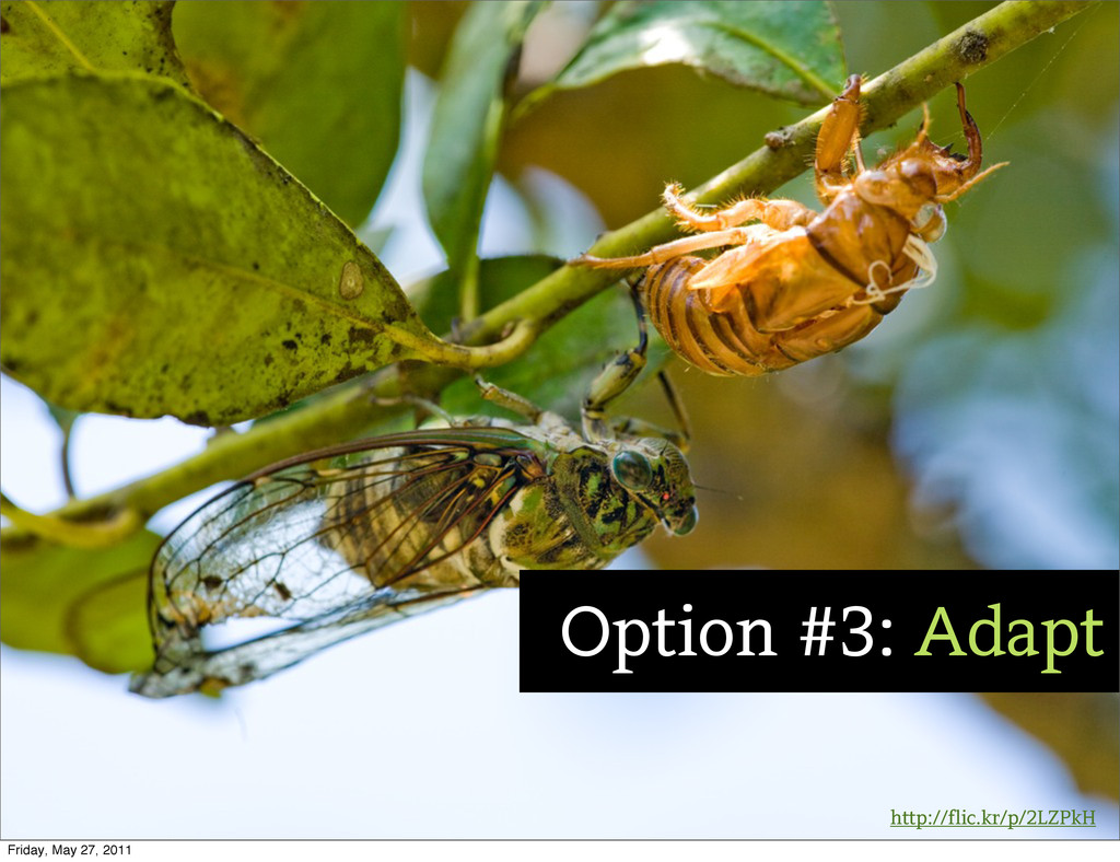 http://flic.kr/p/2LZPkH Option #3: Adapt Friday...