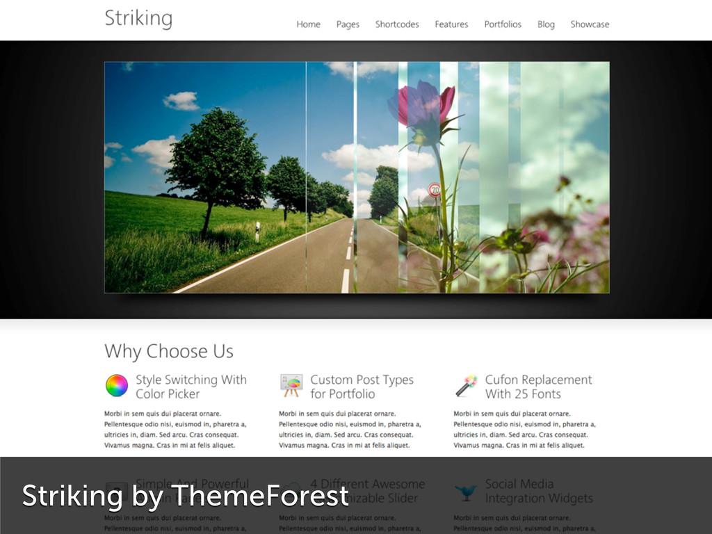 Striking by ThemeForest