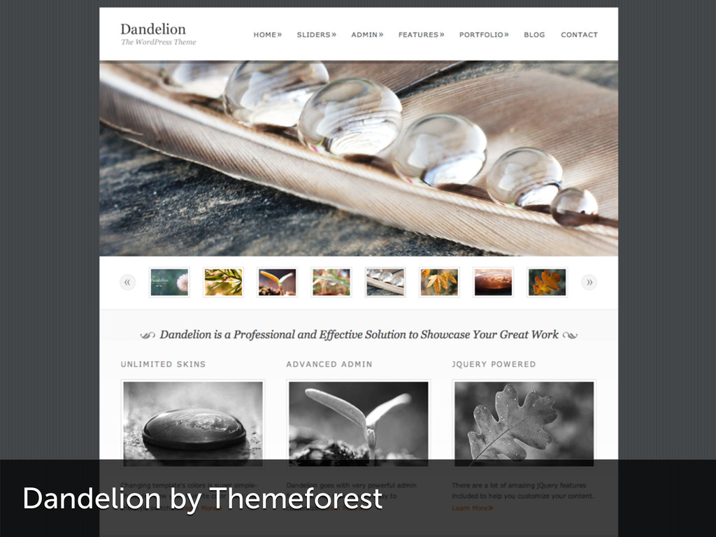 Dandelion by Themeforest