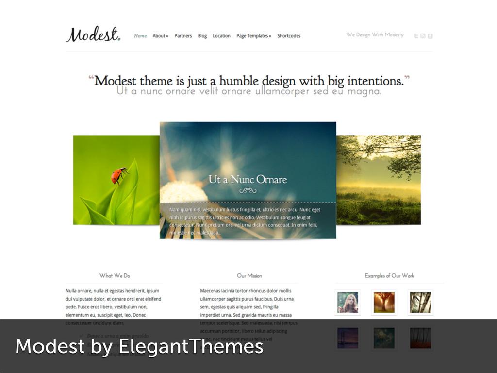 Modest by ElegantThemes