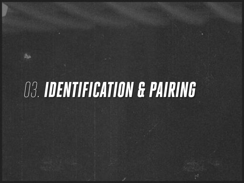 03. IDENTIFICATION & PAIRING