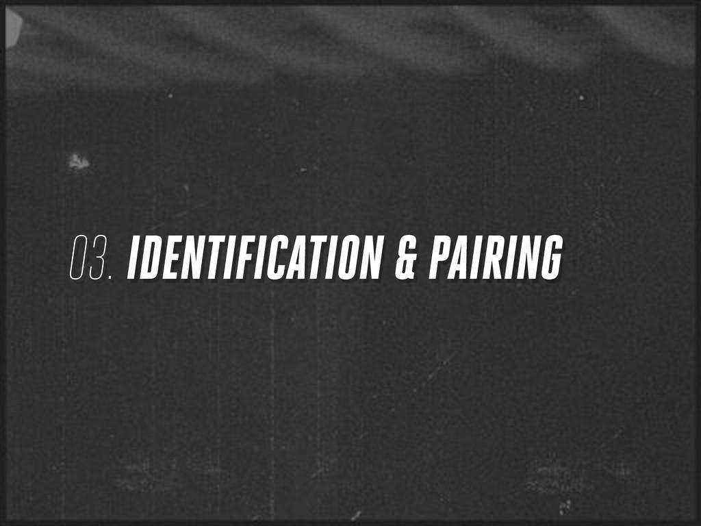 03. IDENTIFICATION & PAIRING