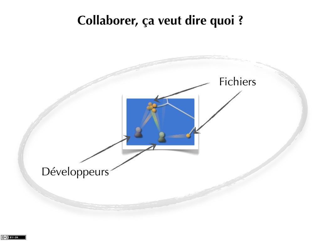 Collaborer, ça veut dire quoi ? Développeurs Fi...