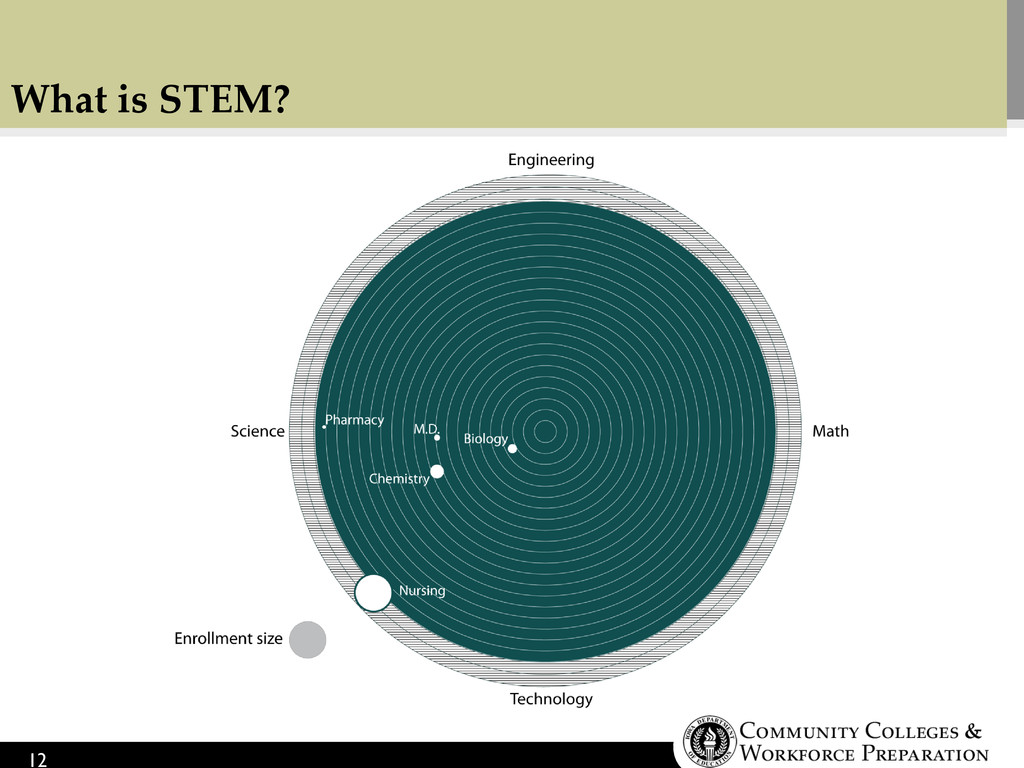 What is STEM? 12