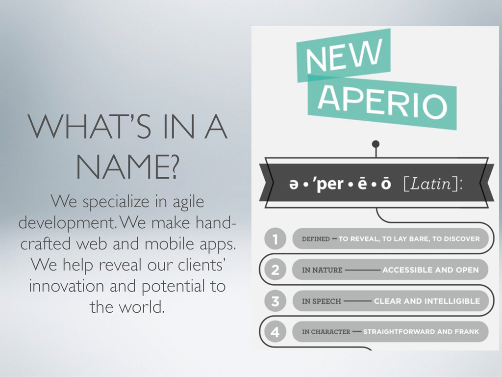 WHAT'S IN A NAME? We specialize in agile develo...