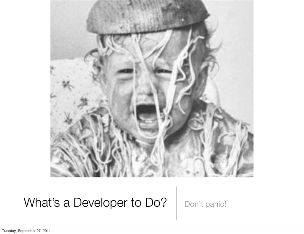 What's a Developer to Do? Don't panic! Tuesday,...