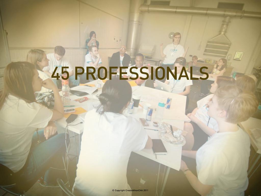 45 PROFESSIONALS © Copyright CreateAthonCHA 2011