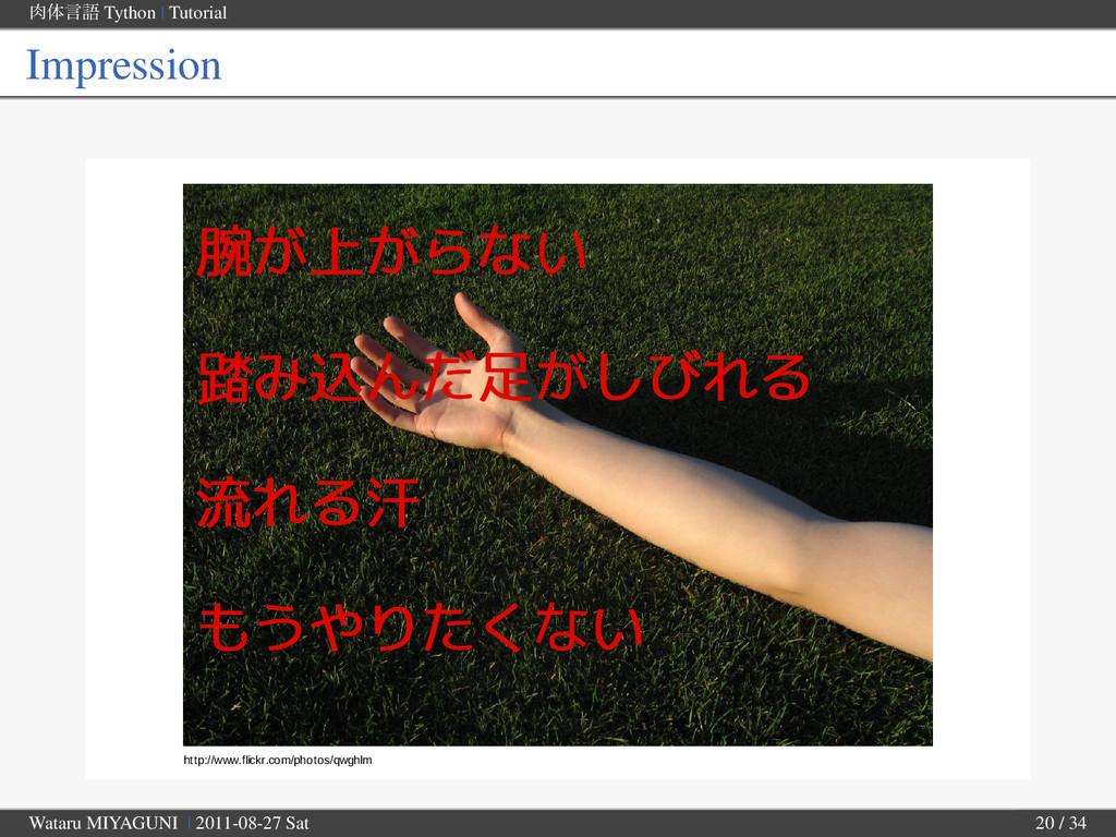 ମݴޠ Tython | Tutorial Impression http://www.fl...