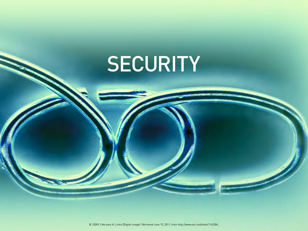 SECURITY B. (2009, February 4). Links [Digital ...
