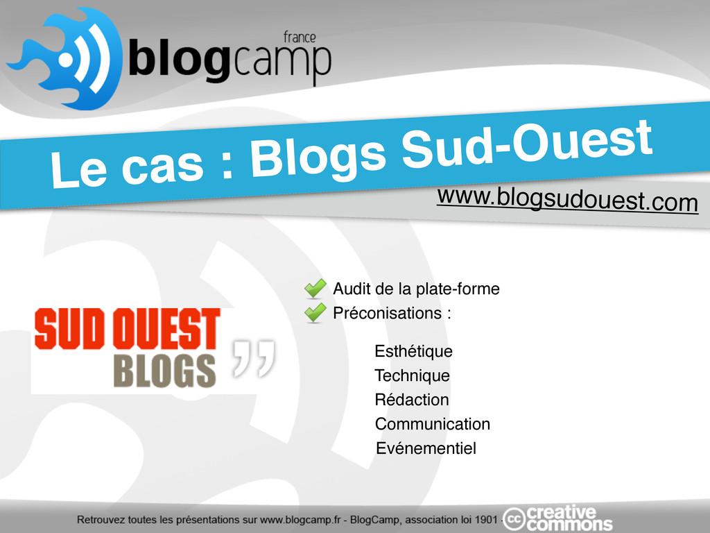 www.blogsudouest.com Le cas : Blogs Sud-Ouest A...