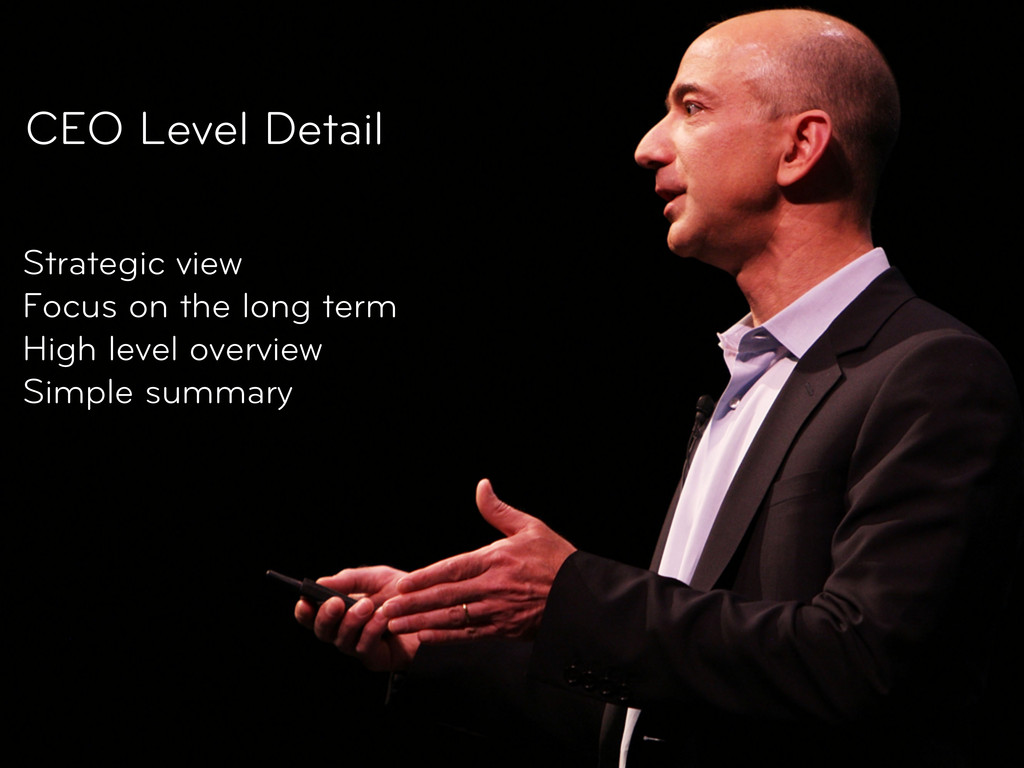 CEO Level Detail Strategic view Focus on the lo...