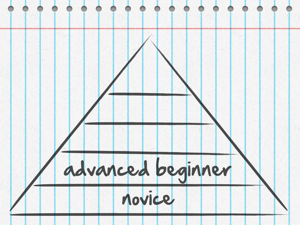 novice advanced beginner