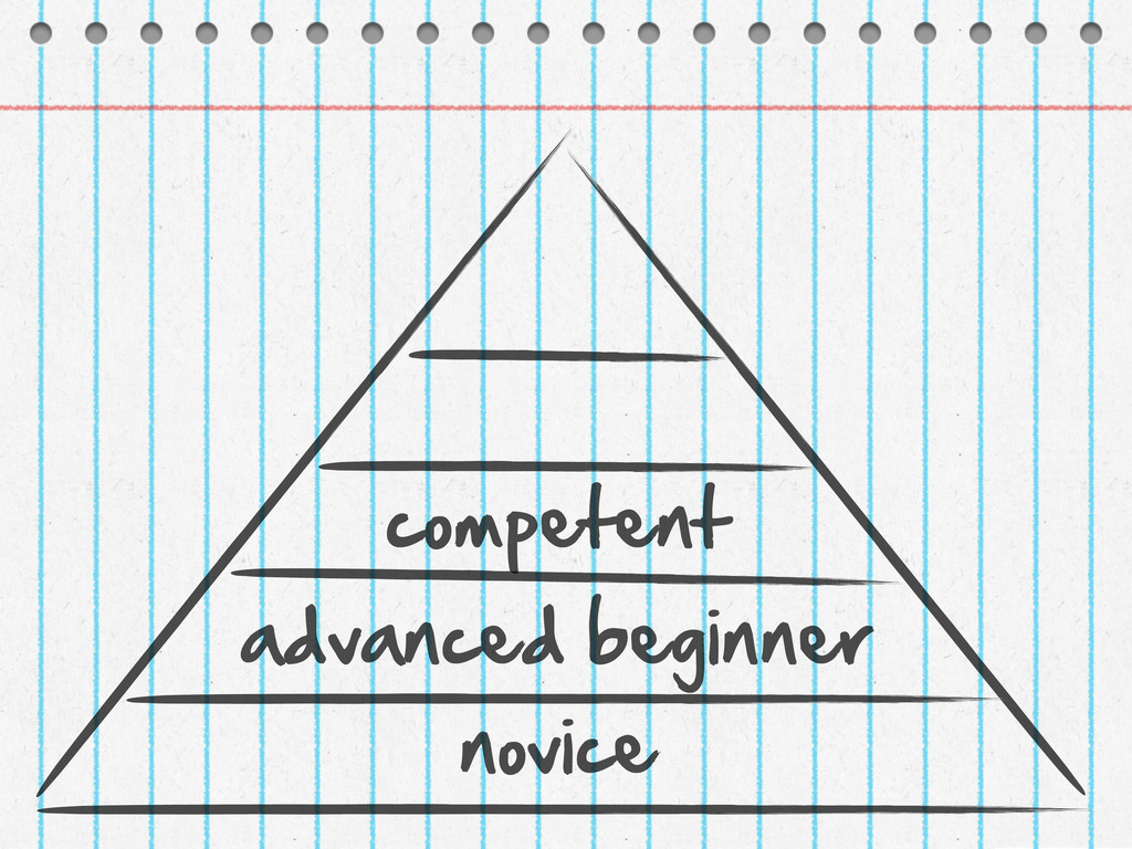 novice advanced beginner competent