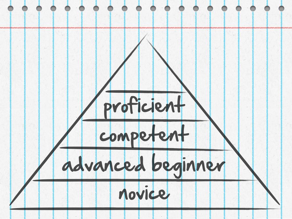 novice advanced beginner competent proficient