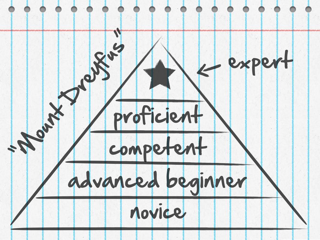 novice advanced beginner competent proficient ...