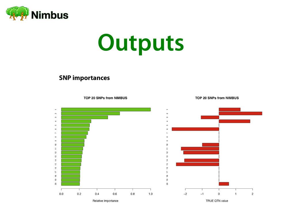 Outputs SNP importances