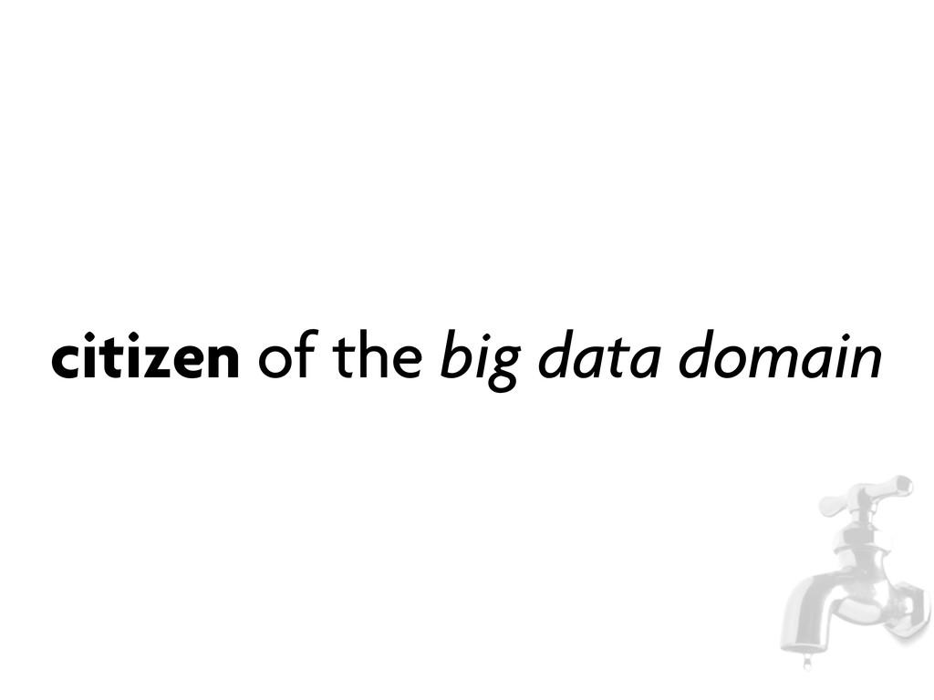 citizen of the big data domain