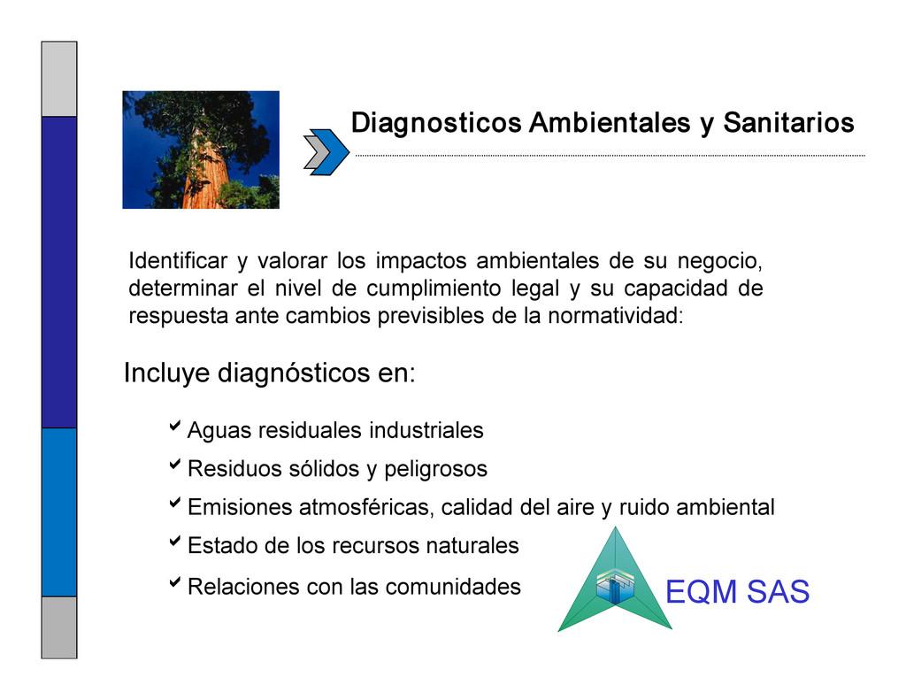 Diagnosticos Ambientales y Sanitarios Identific...