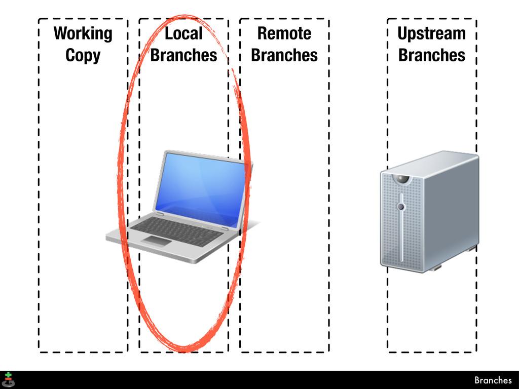 Local Branches Remote Branches Upstream Branche...