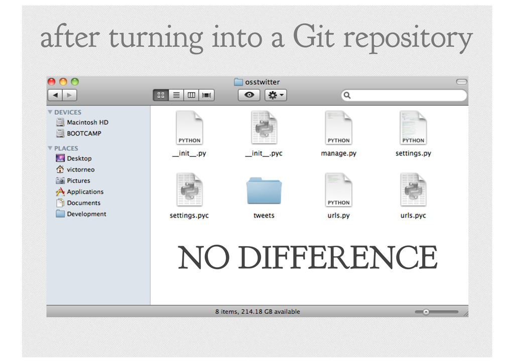 after turning into a Git repository NO DIFFEREN...