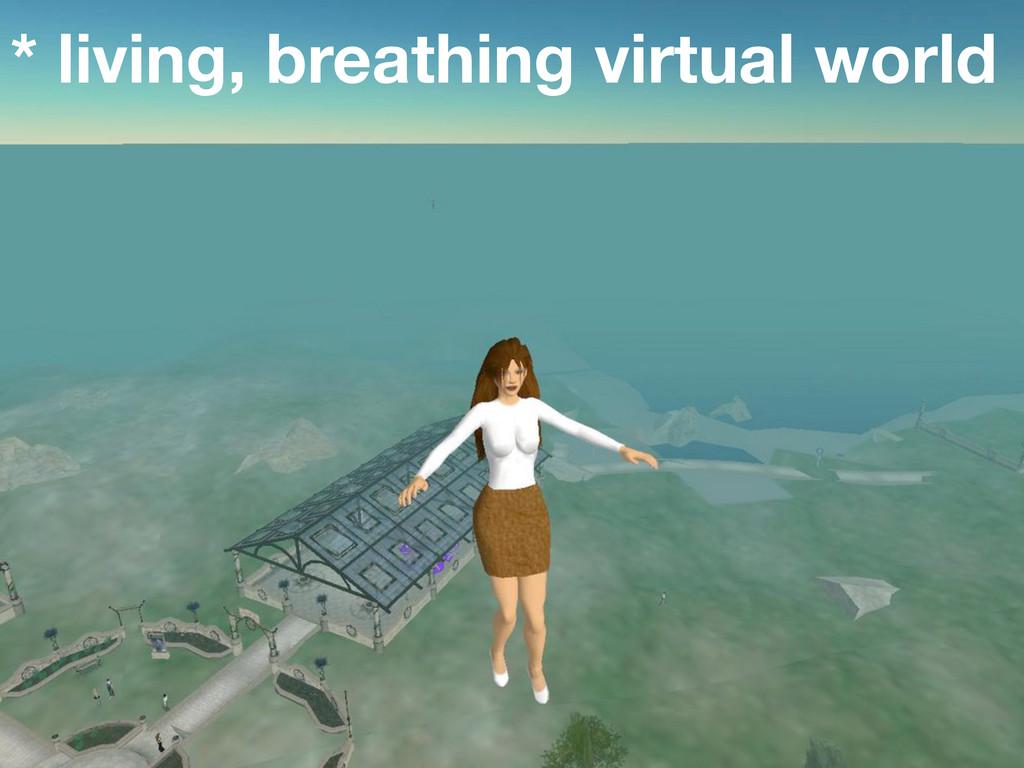 * living, breathing virtual world