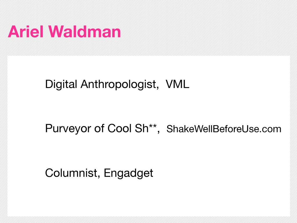 Ariel Waldman Digital Anthropologist, VML Purve...
