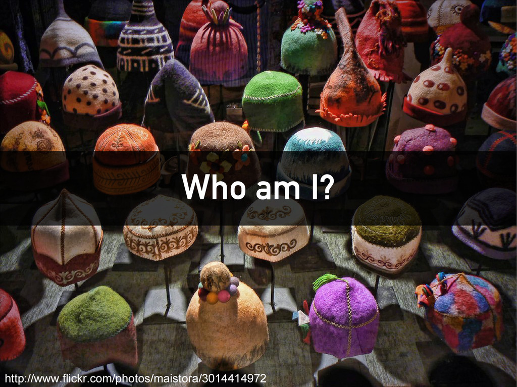 Who am I? http://www.flickr.com/photos/maistora...