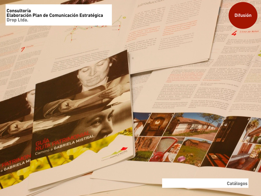 Catálogos Difusión Consultoría Elaboración Plan...