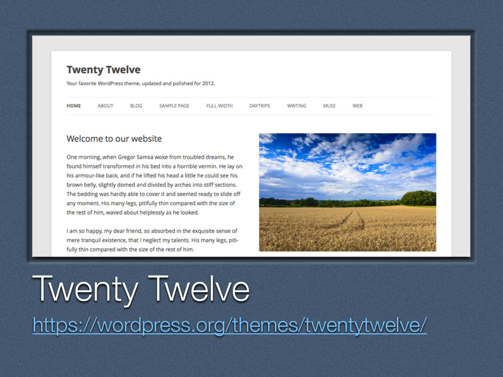 Text Twenty Twelve https://wordpress.org/themes...