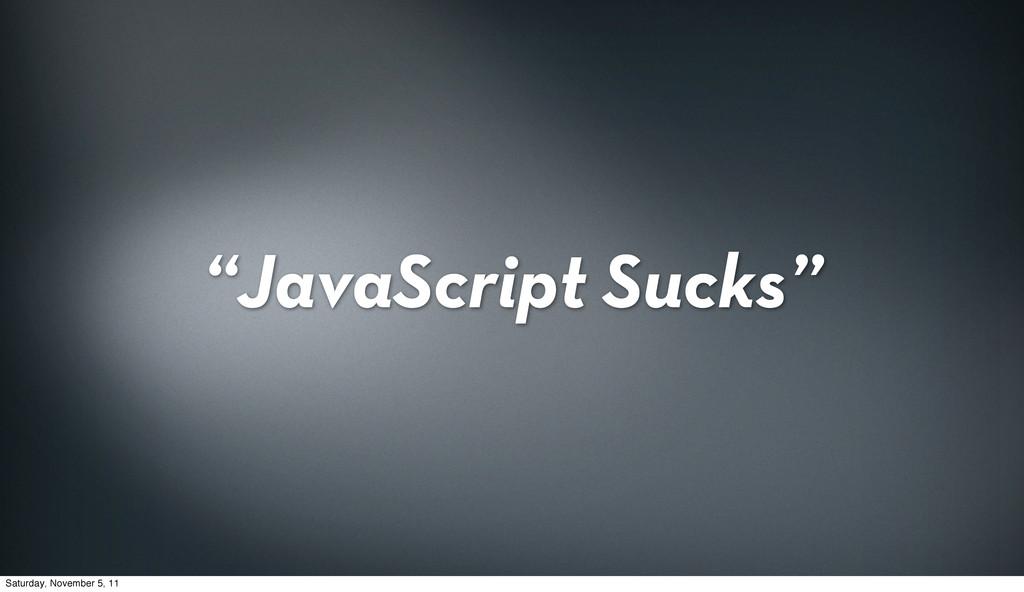 """JavaScript Sucks"" Saturday, November 5, 11"