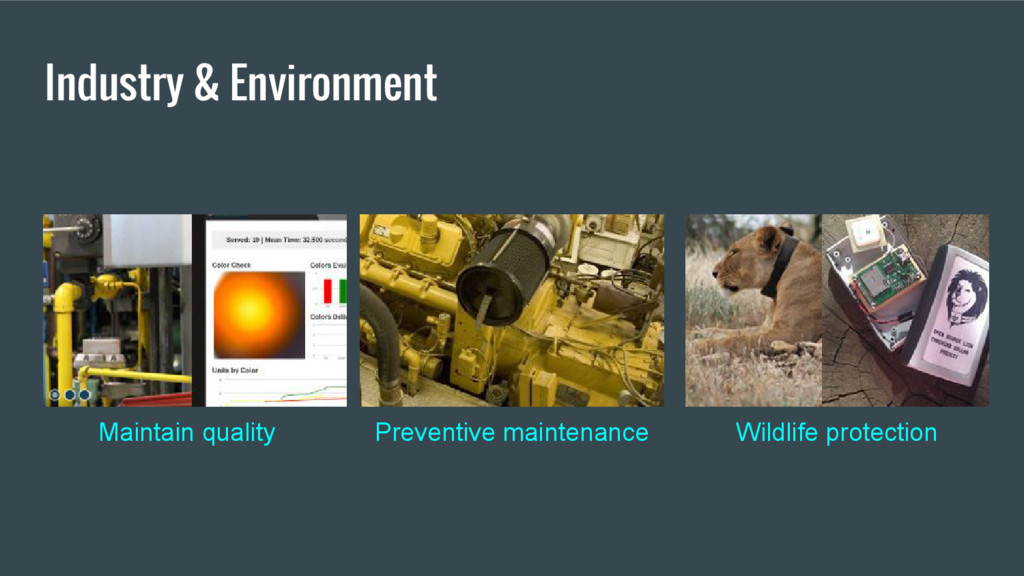 Industry & Environment Wildlife protection Prev...