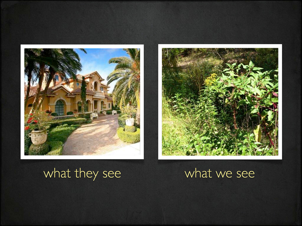 what we see what they see