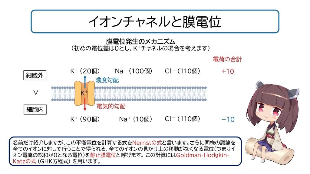 イオンチャネルと膜電位 名前だけ紹介しますが、この平衡電位を計算する式をNernstの式と言い...