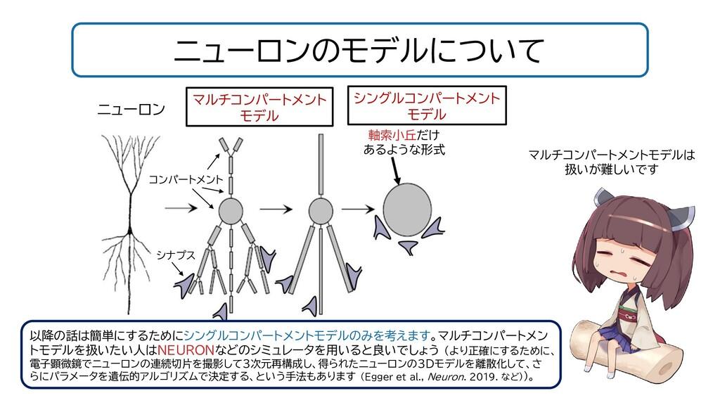ニューロンのモデルについて ニューロン マルチコンパートメントモデルは 扱いが難しいです 軸索...