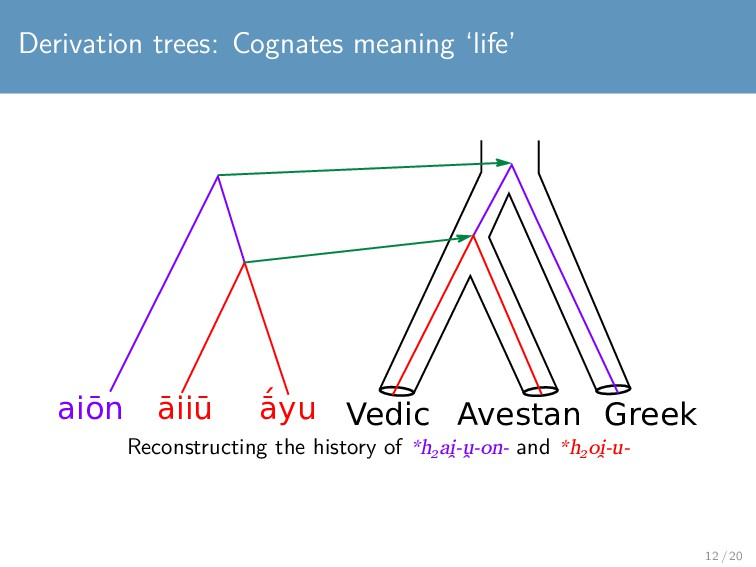 Derivation trees: Cognates meaning 'life' aiōn ...
