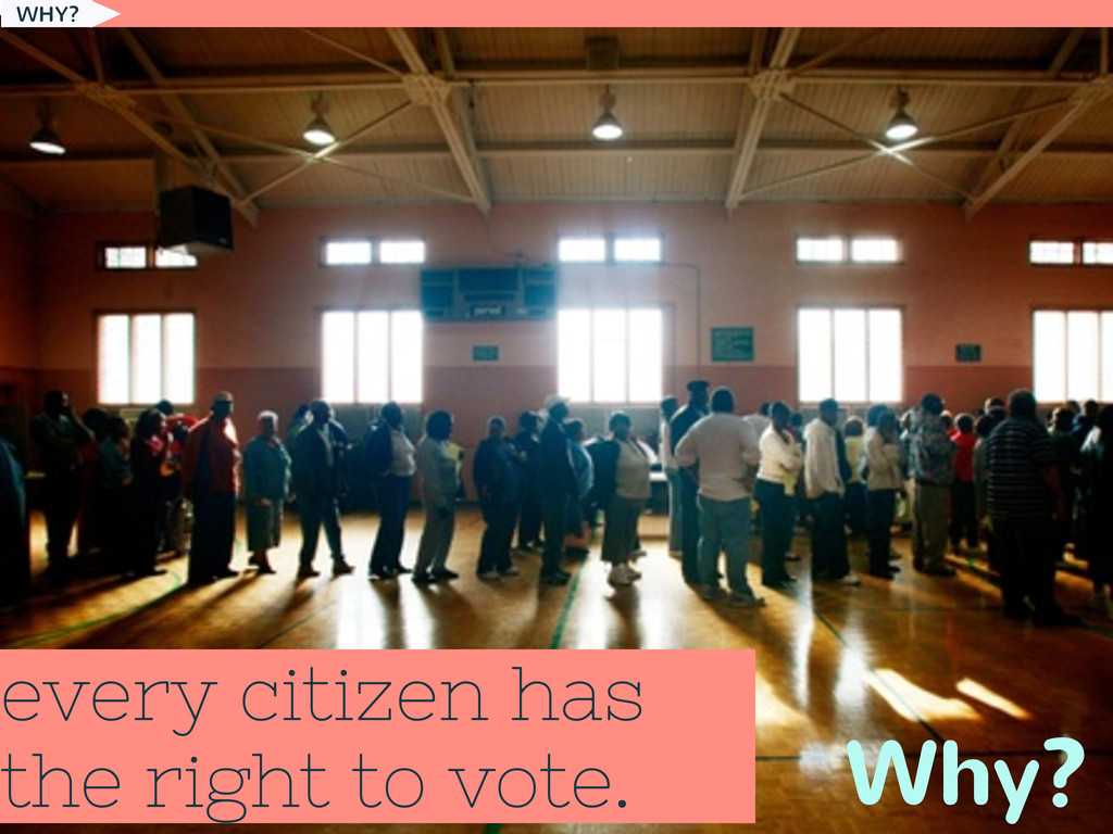 every citizen has the right to vote. Why? WHY?