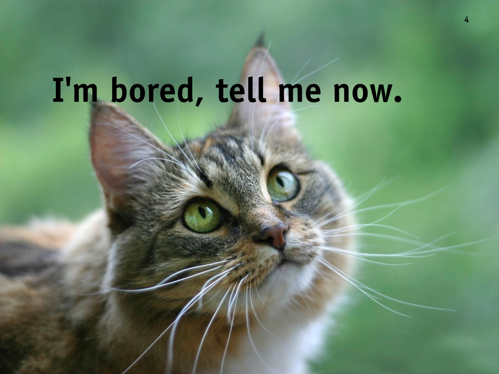 I'm bored, tell me now. 4